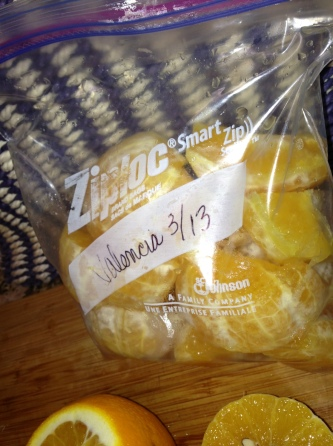 Placed in Freezer Safe Ziplog Bag