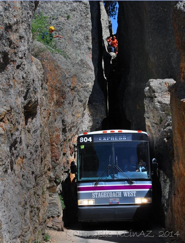 bus804