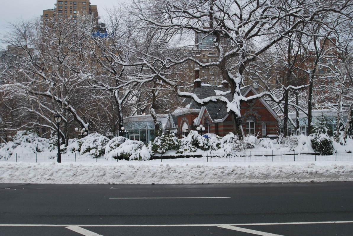 Central Park After Fresh Snow