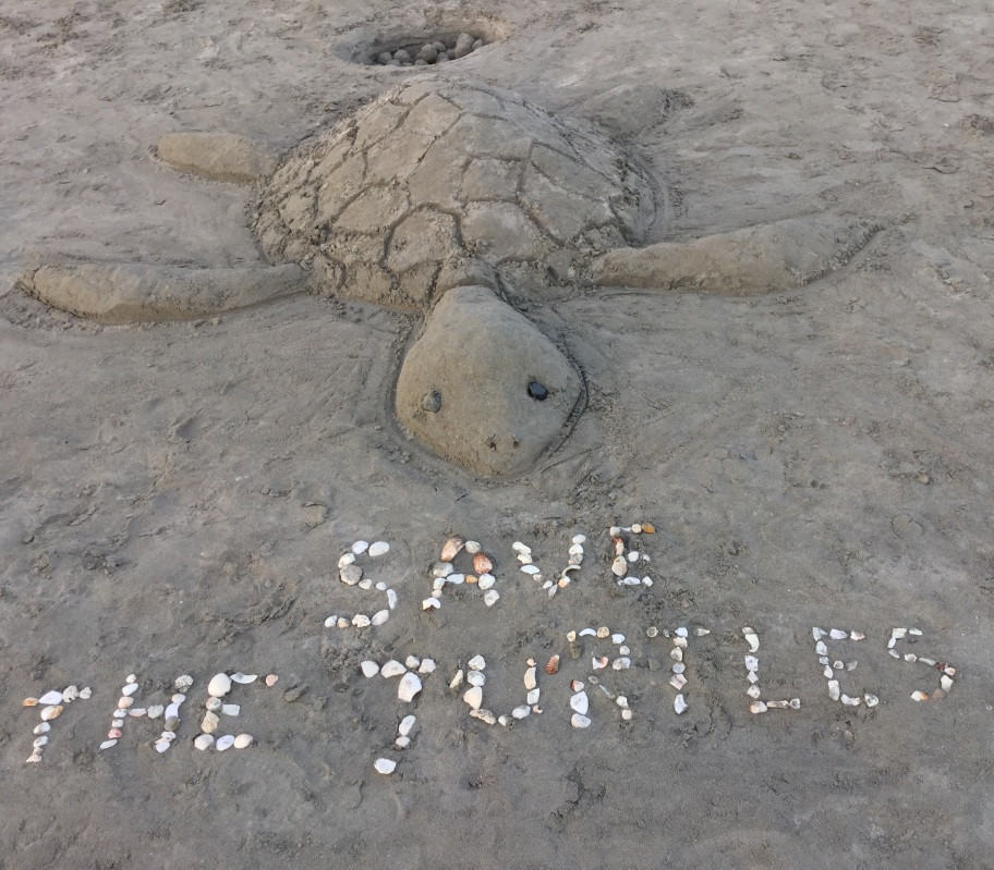 Save the turtles sand sculpture
